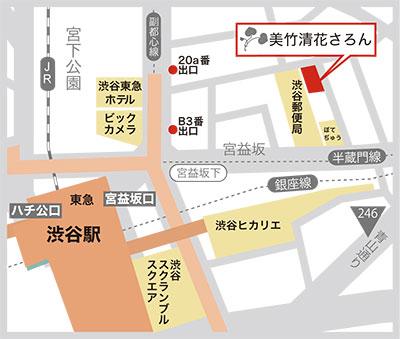 Salon Simple Map